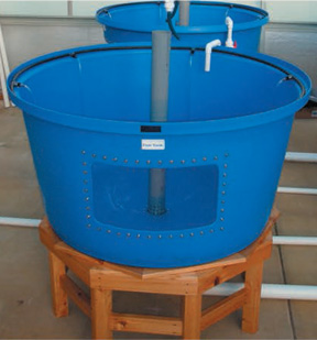 Polytank Flat Bottom tanks with Center Stand Pipe drains.